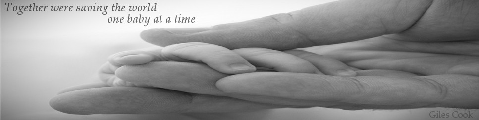 One baby at a time banner
